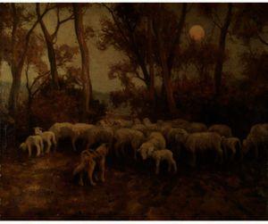 Sheep At Sundown