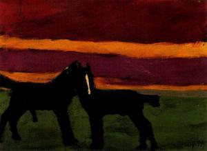 Young black horses