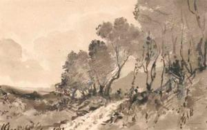 A mountainous landscape with a path