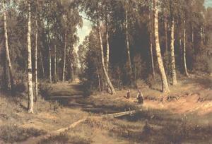 Brook in a birch grove