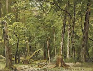 Study of a Summer in Belovezh Forest