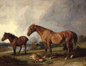 Portraits of Blackthorn, a Broodmare, with Old Jack, a Favourite Pony