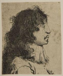 Bust of a Young Man in Profile