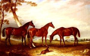 Marvel, KingFisher And The Lad, Three Hunters Belonging To William Angerstein, In A Field With His Dog Spring