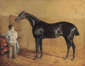 A racehorse in a stable with a groom
