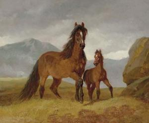 A Welsh Mountain Mare and Foal in an Upland Landscape