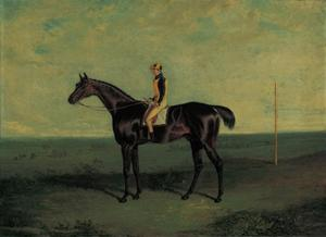 Dr. Syntax, a brown racehorse with Robert Johnson up, in an extensive landscape