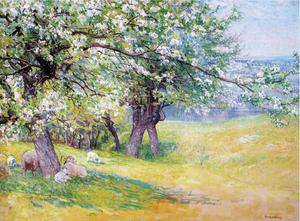 Sheep under the Apple Blossoms