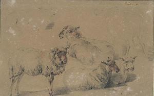 Study of six sheep