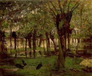 Pollard Willows on the Gein