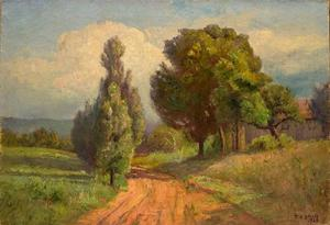 Country Road (Summer,The Belmont Road)