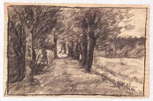 Lane through the Woods