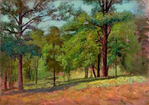 Wooded Slope (The Hill Slope, Midsummer)
