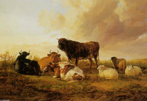 Cattle and Sheep in a Field