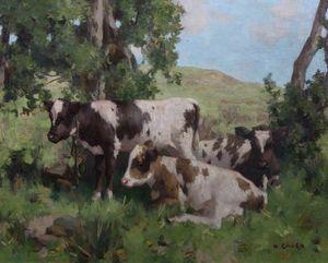Calves in Summer