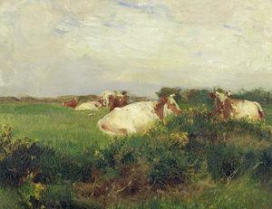 cows` 在 领域