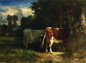 Коровы в     ландшафт
