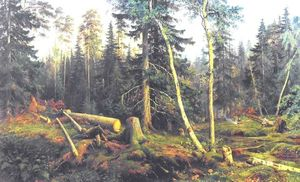 Cutting of wood