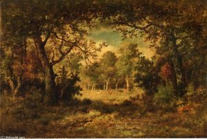 Fontainblelau Forest