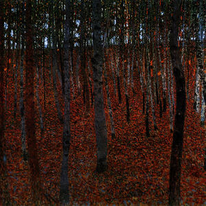 Forest of Beech Trees