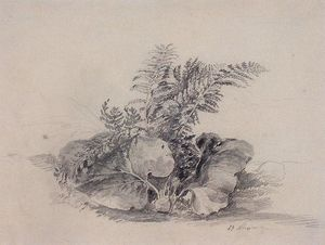 Fern leaves and burdock