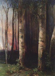 Fire in woods