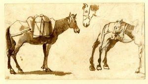 Dessin d' mules , y compris un complète longueur