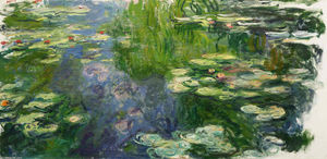 Water Lilies (68)