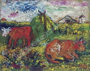 牛とフィールド