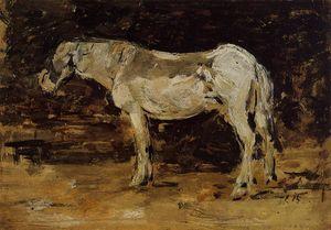 le blanc cheval