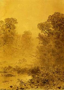 Swamp in a Forest. Mist