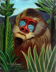 ジャングルでマンドリル