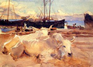 Волов на пляже в Бая