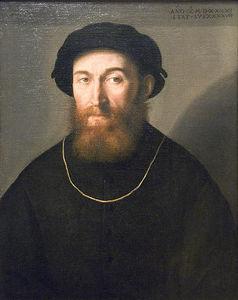 Bust of a Bearded Man