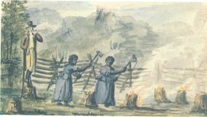 At the plantation