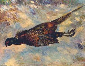 Dead Pheasant in the Snow