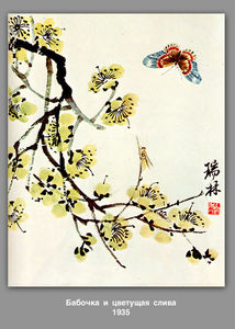 Butterfly and flowering plum