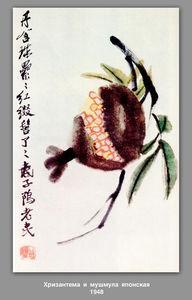 Chrysanthemum and loquat