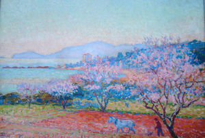 The Almond Flowers