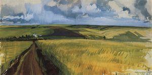 Neskuchnoye.Field.