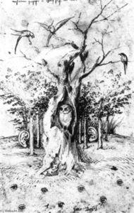 Der Anhörungs Wald und das Sehen Feld