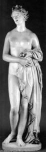 The 'Tinted Venus'