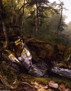 Study from Nature: Rocks and Trees in the Catskills, New York