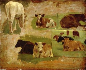 Study of Cattle