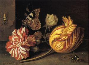 Study of Flowers and Insects