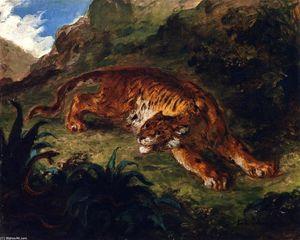 Тигр Пораженный  около     змея