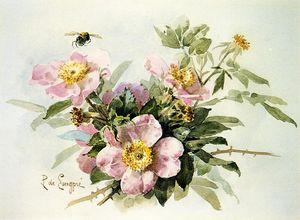 野生の バラ と一緒に 蜂
