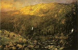 A Wooded Mountain Landscape