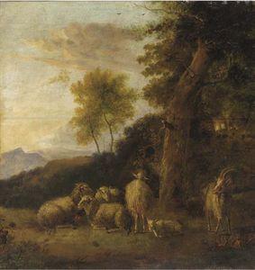 一个树木繁茂的景观 用 组 羊 和山羊 休息