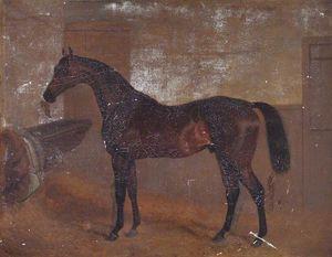 Bay 'middleton', Winner Of The Epsom Derby